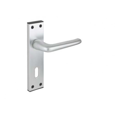 Contract Lever Door Handle On Lock Backplate S.A.A.